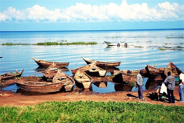 Uganda David Vidrih
